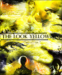 The look yellow colection - Diaz de vivar gustavo
