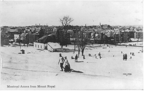 Montreal Annex from Mount Royal, Montreal, QC, about 1910