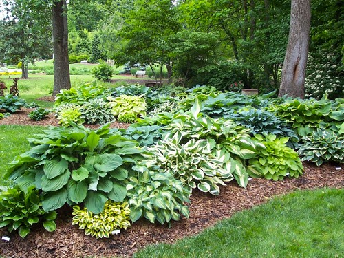 Sloped garden design with big challenge for Wet garden designs