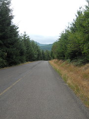 Meadow Lake Road becomes more rudimentary as you approach the Nestucca River Road