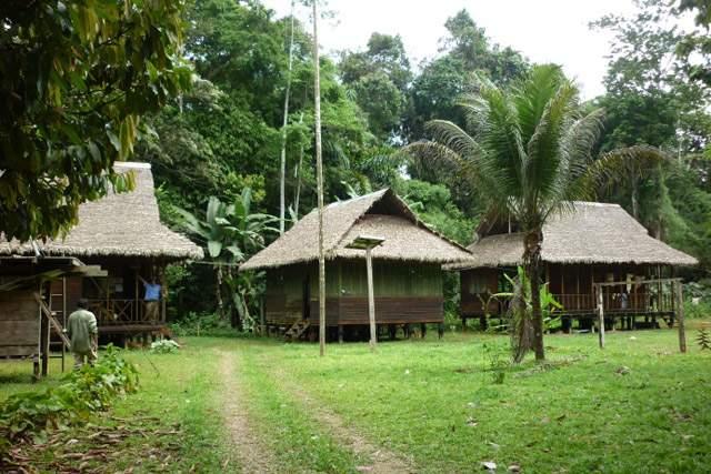 tambopata-atractivos-turisticos-cusco-madre-de-dios-puno-peru