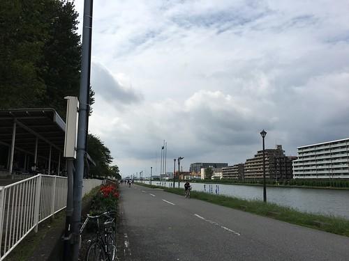 ポケモンGo 戸田公園 ヒトカゲの巣
