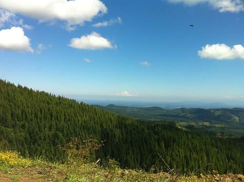 usa mountain mountains washington unitedstates mountrainier biking mountainbiking capitalforest