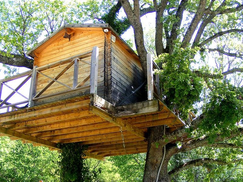 cabane+arbres