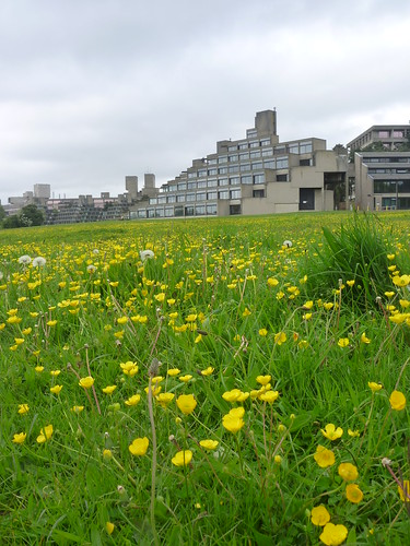 Spring at UEA