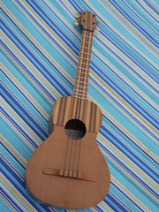 cuatro, string instrument, ukulele, folk instrument, cavaquinho, guitar, vihuela, acoustic-electric guitar, bass guitar, string instrument,