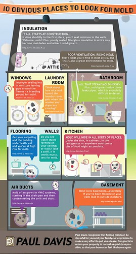 mold INFOGRAPHIC---10-Obvious-Places-Mold