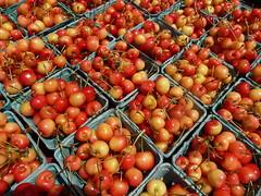 vegetable(0.0), acerola(0.0), tomato(0.0), hippophae(0.0), malpighia(1.0), produce(1.0), fruit(1.0), food(1.0),