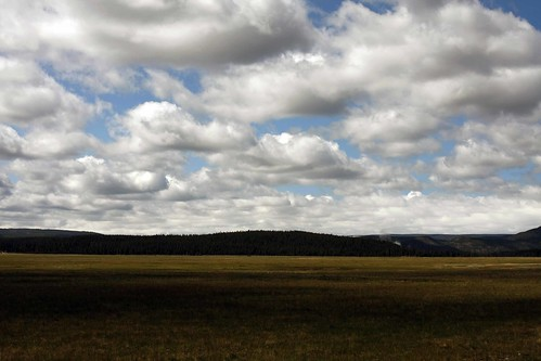 yellowstone_prairie_blog