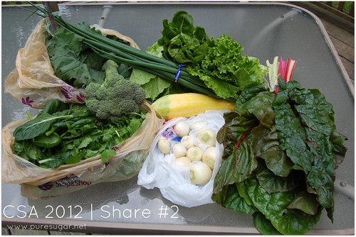 CSA 2012 | Share #2