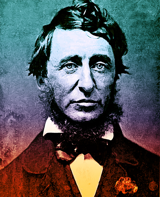 henry-david-thoreau-daguerreotype-1856 72dpi copy