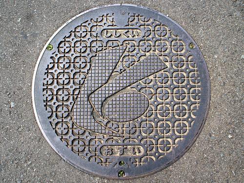 Shishikui Tokushima manhole cover (徳島県宍喰町のマンホール)