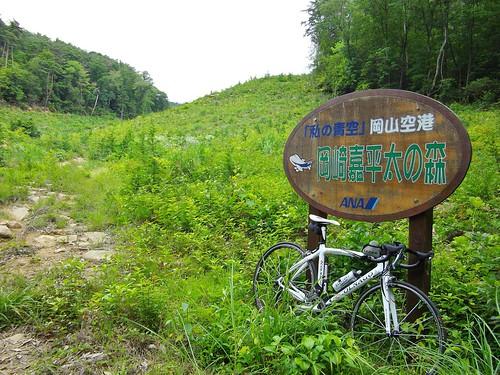 岡崎嘉平太の森