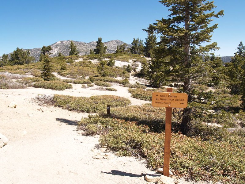 Trail Junction of the PCT and the South Ridge Trail to Tahquitz Peak