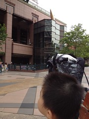 YGPとらちゃん (2012/7/1)