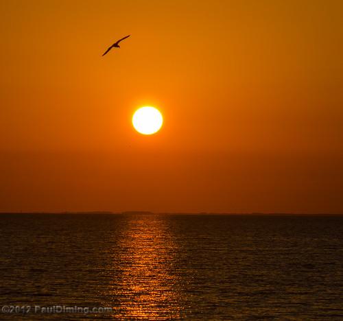 sunset landscape us spring unitedstates florida sunsets stgeorgeisland saintgeorgeisland stgeorgeislandflorida d7000 saintgeorgeislandflorida pauldiming stgeorgeisl