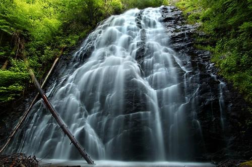 無料写真素材, 自然風景, 森林, 滝, 風景  アメリカ合衆国