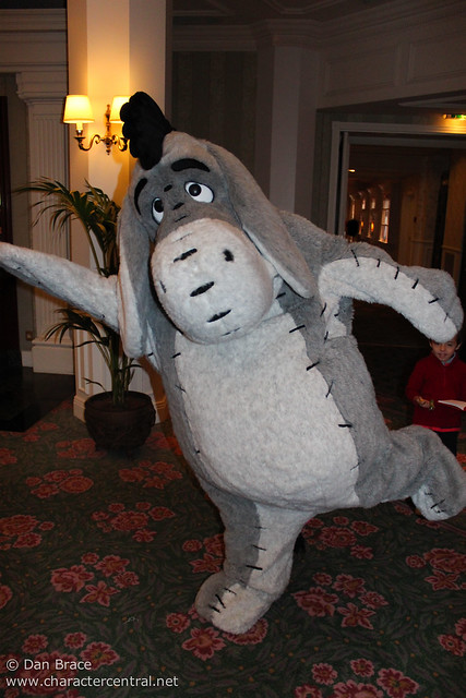 Having fun with Eeyore :)
