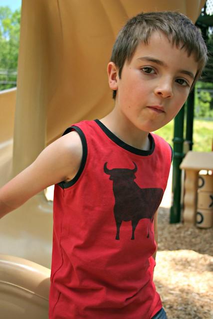 bull shirt 3