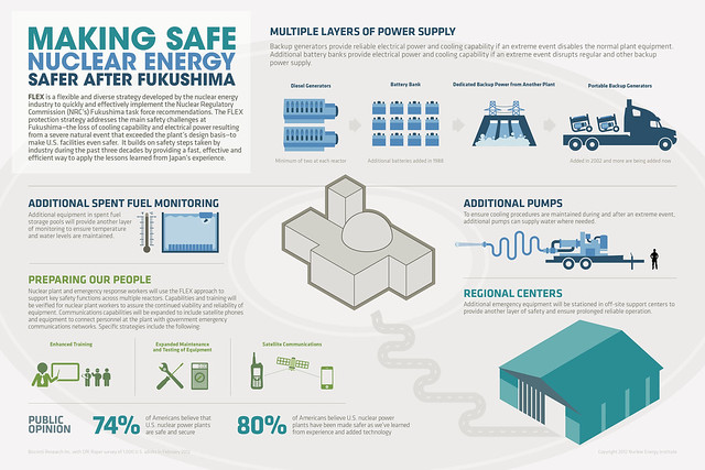 Making Safe Nuclear Energy Safer After Fukushima