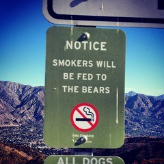 Smokers Will Be Fed to the Bears