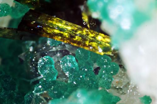 Cornwallite & Olivenite
