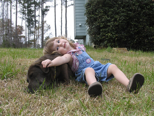 Teaching children how to love and care for pets