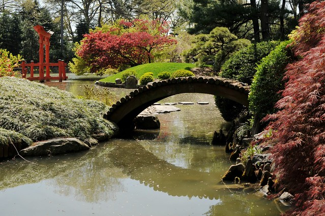 Koi pond bridge flickr photo sharing for Koi pond bridge