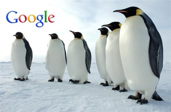 Google Penguin Search Algorithm Update