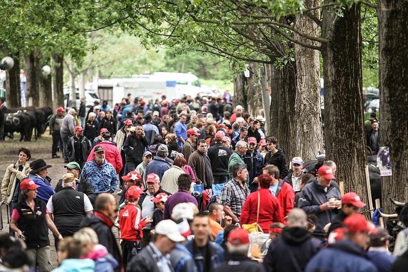 Fête Nationale de la Race d'Hérens