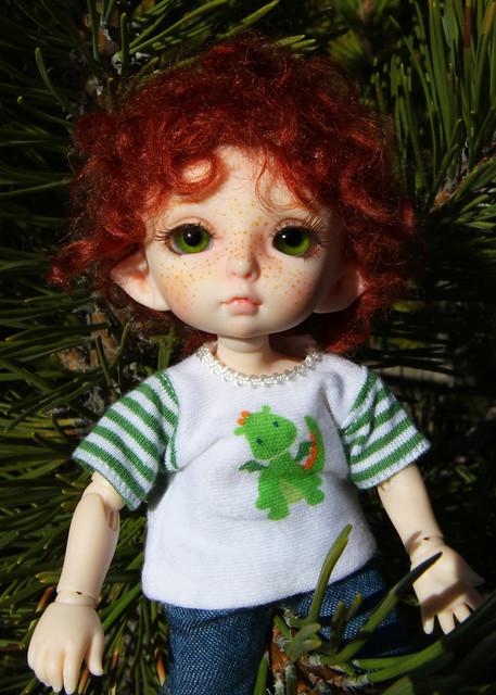 noah evergreen1