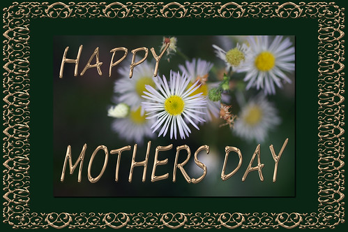 To all moms, future moms, and moms who are no longer with us.