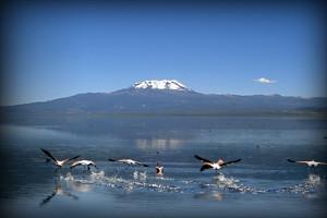 laguna-de-parinacochas-ayacucho-peru2