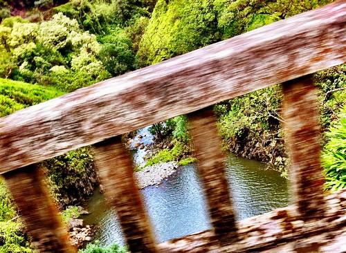 camera hawaii maui roadtohana iphoneography iphoneograpy cameraplus