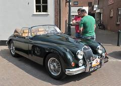 automobile, jaguar xk120, jaguar xk140, vehicle, performance car, automotive design, jaguar xk150, antique car, classic car, vintage car, land vehicle, luxury vehicle, sports car,