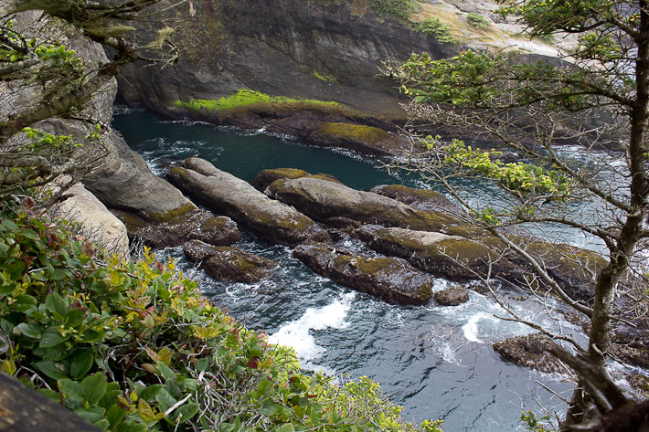 Neah Bay, Cape Flattery Trail.