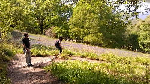 Hiking the Balmaha nature trail