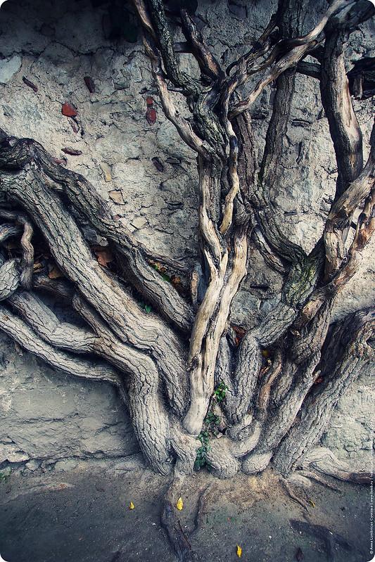 2012.1.9-bahchisarai-090