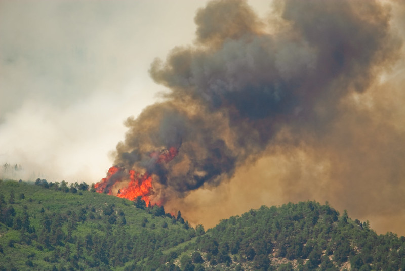 The Waldo Canyon Fire