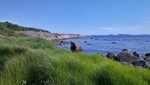 Sommer på kyststien (Htc one x)