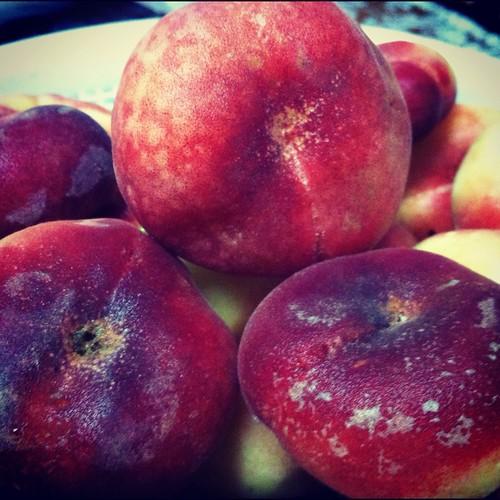 Sweet Flat Peaches - My favorite Summer fruits by Ghazali (Orang Malaya Di Yanbu, KSA)