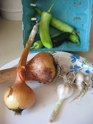 onion and garlic harvest