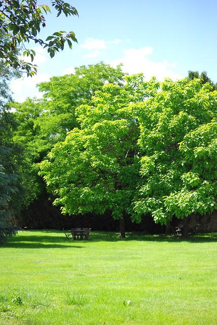 Jardin Lacanche en Bourgogne