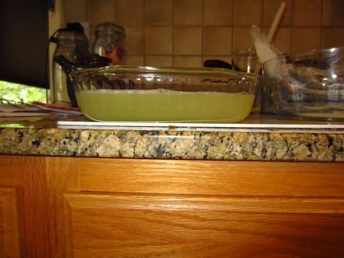 20120709 Washing Wool 003