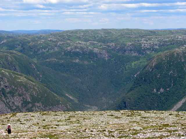 Hilltops from Gros Morne