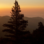 Sunrise, San Bernardino Mountains