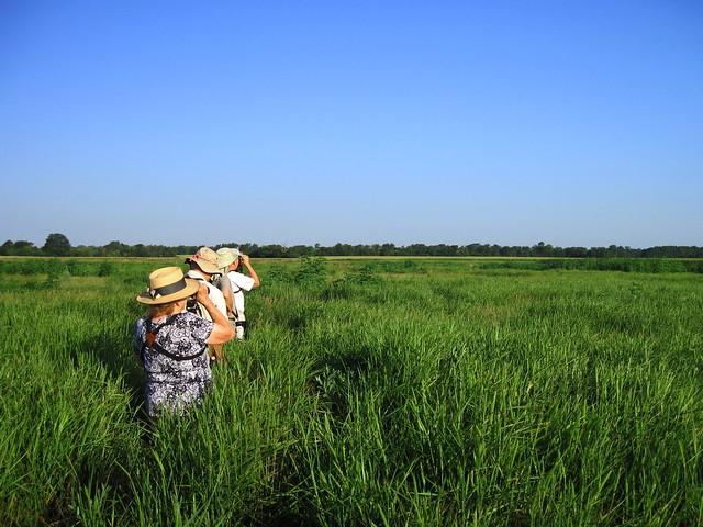 Prairie Green Preserve 2-20120717
