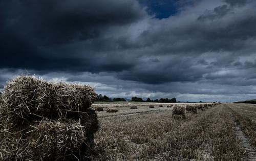 Bottes de paille sous un ciel orageux Paysage Désat3
