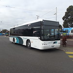 Driver Bus Lines Mount Waverley