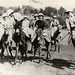 1930s anon santa monica - ladies polo match on mules - front